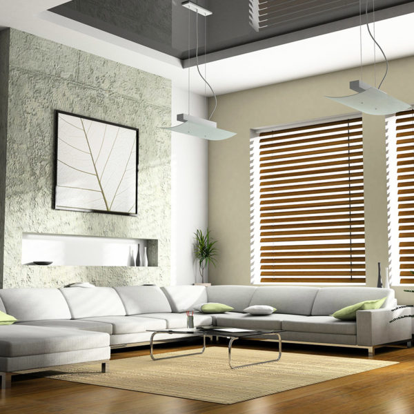 Фото 3 - минимализм в интерьере гостиной