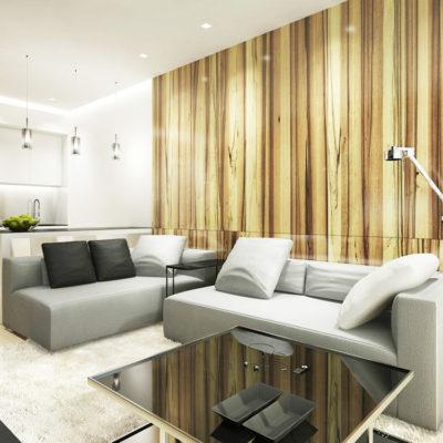 Фото 1 - минимализм в квартире-студии